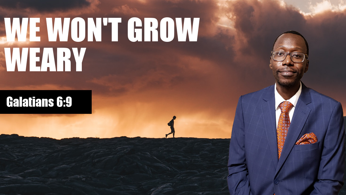 We Won't Grow Weary Banner